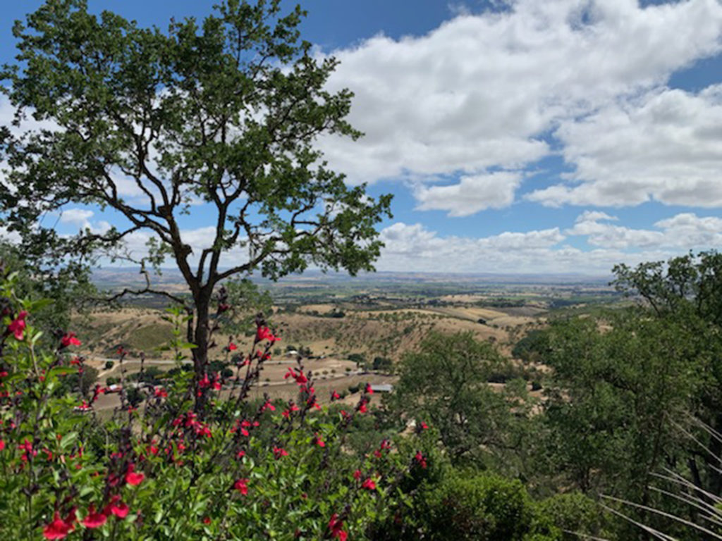 View from Le Cuvier winery in Paso Robles, California