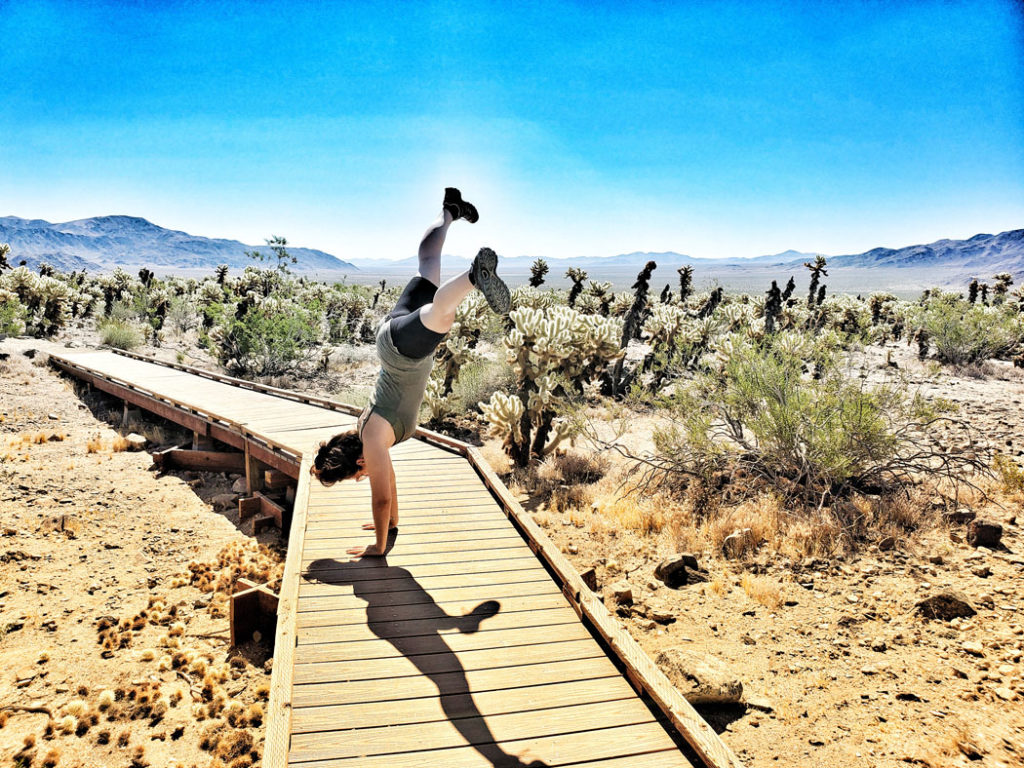 Linds doing a cartwheel in the Cholla Cactus Garden at Joshua Tree National Park