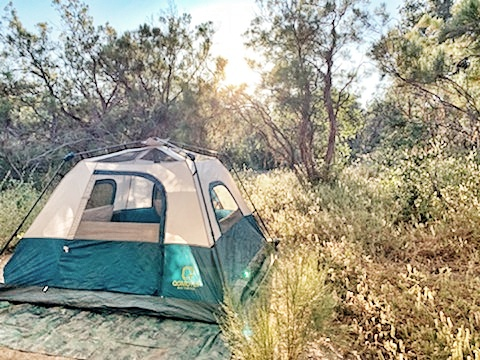Tent camping in Southern California's wilderness